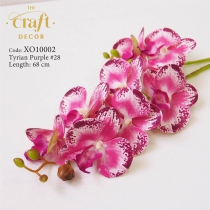 2 Branches Latex Butterfly Orchid