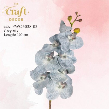 Premium Latex Butterfly Orchid