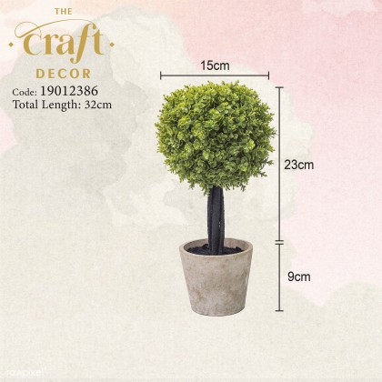 Potted Plant - C