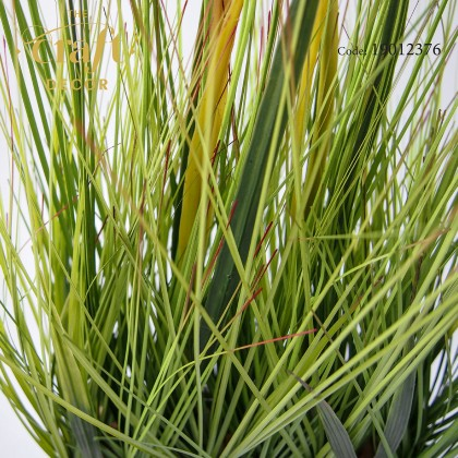 Potted Plant - E