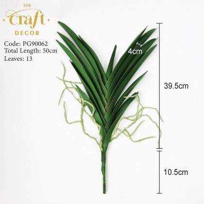 Vanda Orchid Leaf With Roots